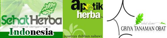 produsen herbal indonesia dan tanaman obat tradisional