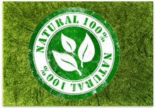 obat herbal tradisional indonesia