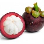 Herbal Penangkal Penyakit Batu Ginjal