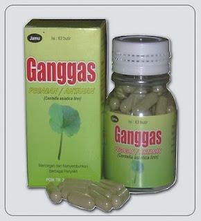 obat herbal untukmeningkatkan kecerdasanotak iq