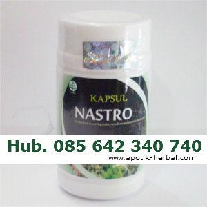 obat herbal untuk stroke