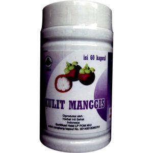 ekstrak herbal kulit manggis