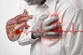 herbal mengatasi penyakit jantung