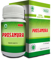 prosamura obat herbal atasi asam urat