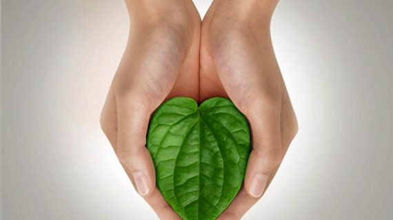 Mengobati Masalah Kewanitaan dengan Herbal Alami